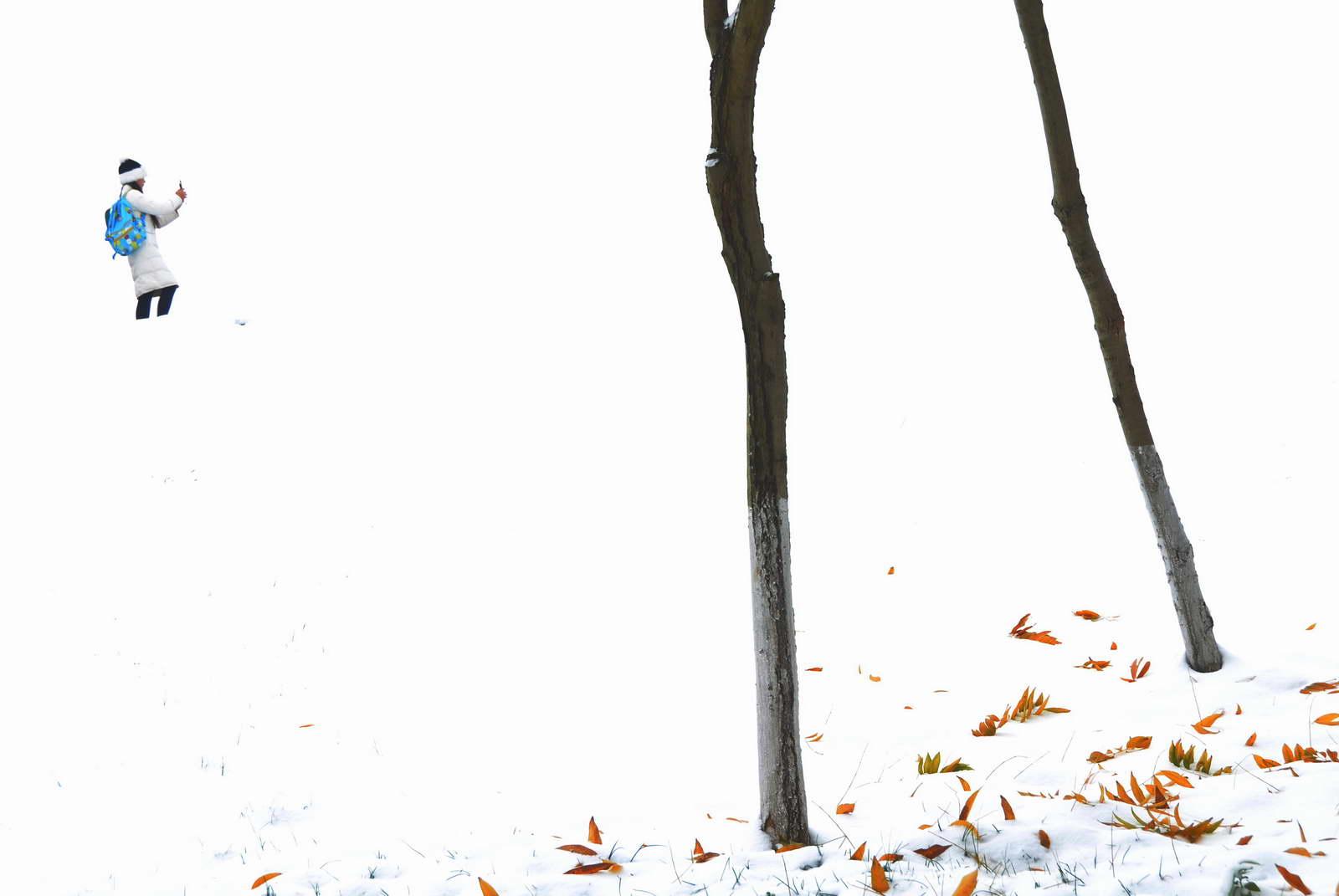 中国移动 方文青《雪中即景》.JPG