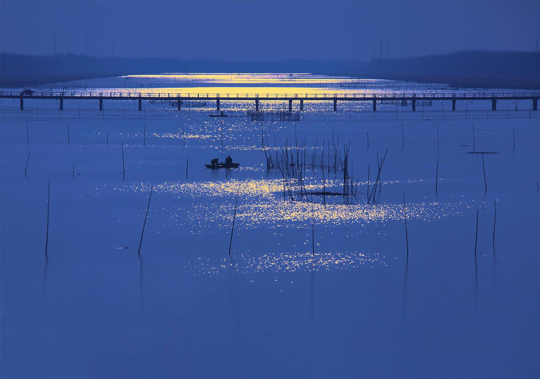 《湿地渔歌》张鹏111044.jpg