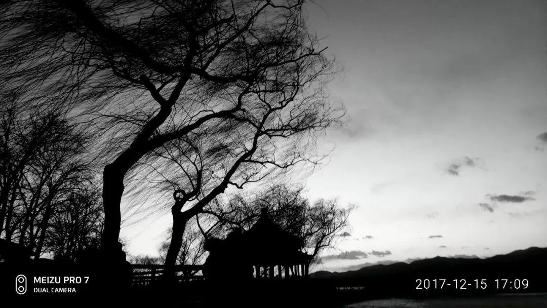 《晚风》魏立彬 182025.jpg