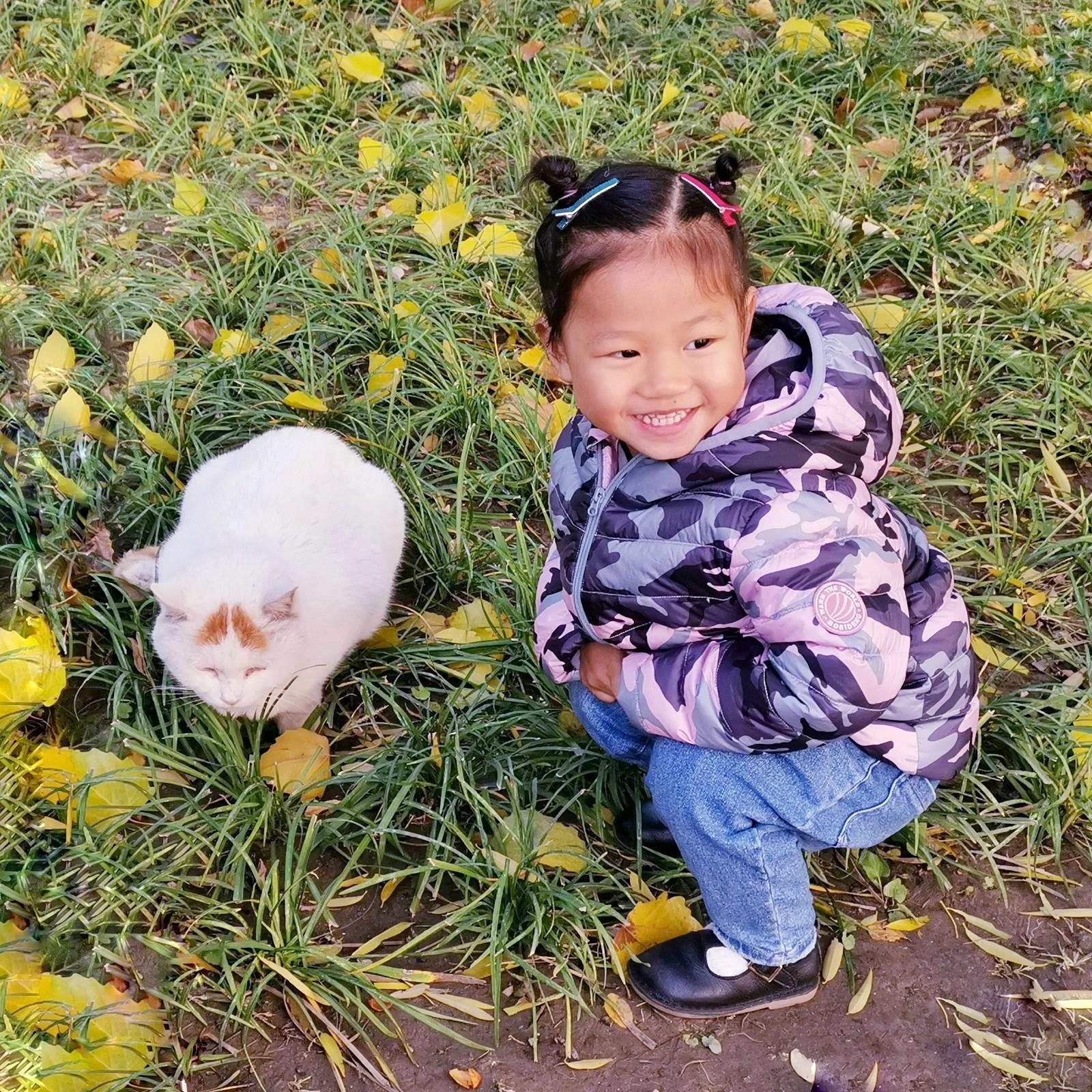 济南-老齐 《快来看猫》 HUAWEI.jpg