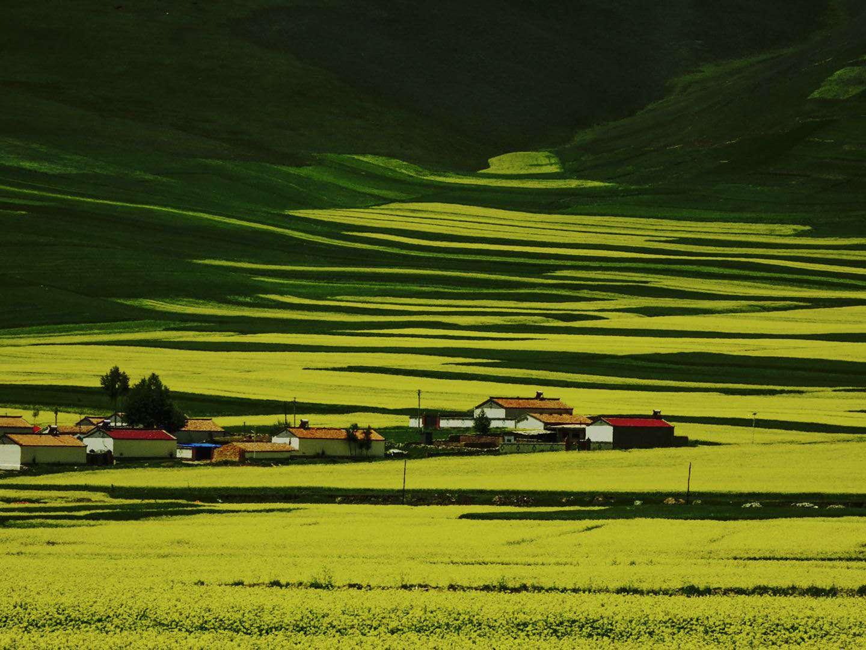 海南-风先生 《春天的草原》 Sony.jpg
