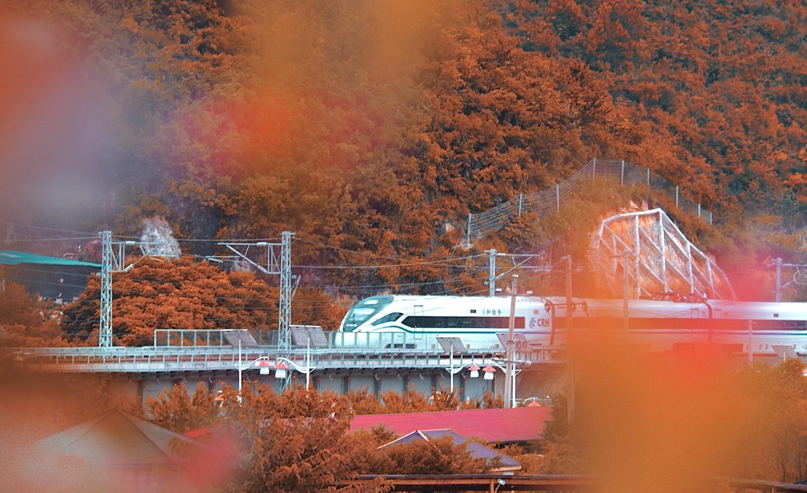 贵州-良马晓船 《驶向金秋》 Canon.jpg