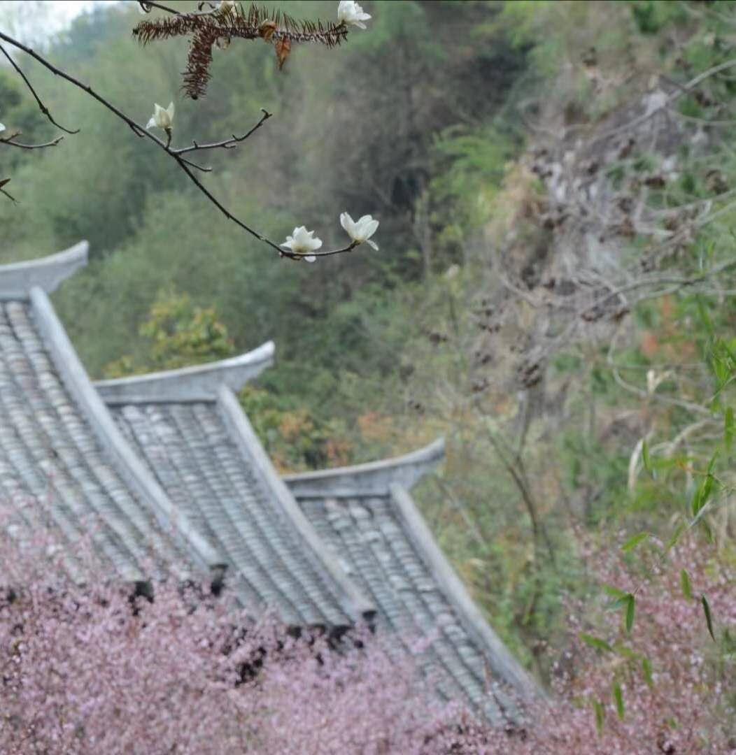 江西-海成沙堆 《春之翘》 Nikon.jpg