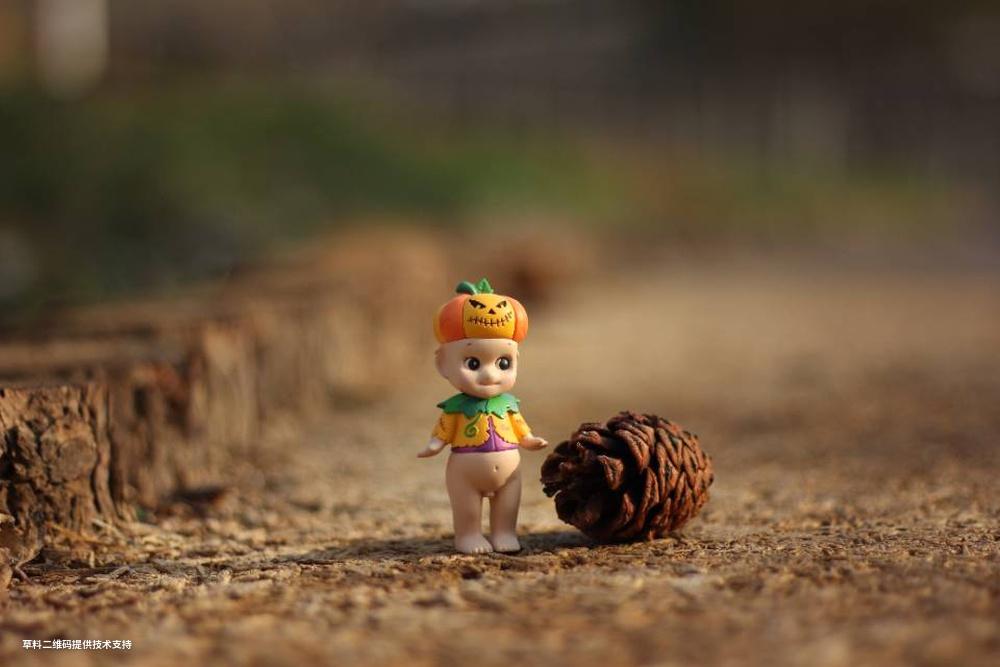 郑永红《绿心小精灵》Canon,游览美丽的城市绿心公园,看到小路上落下的松籽,感觉场景很美,随即拿出自带的盲盒小精灵构图拍下了这张绿心小精灵!.jpg