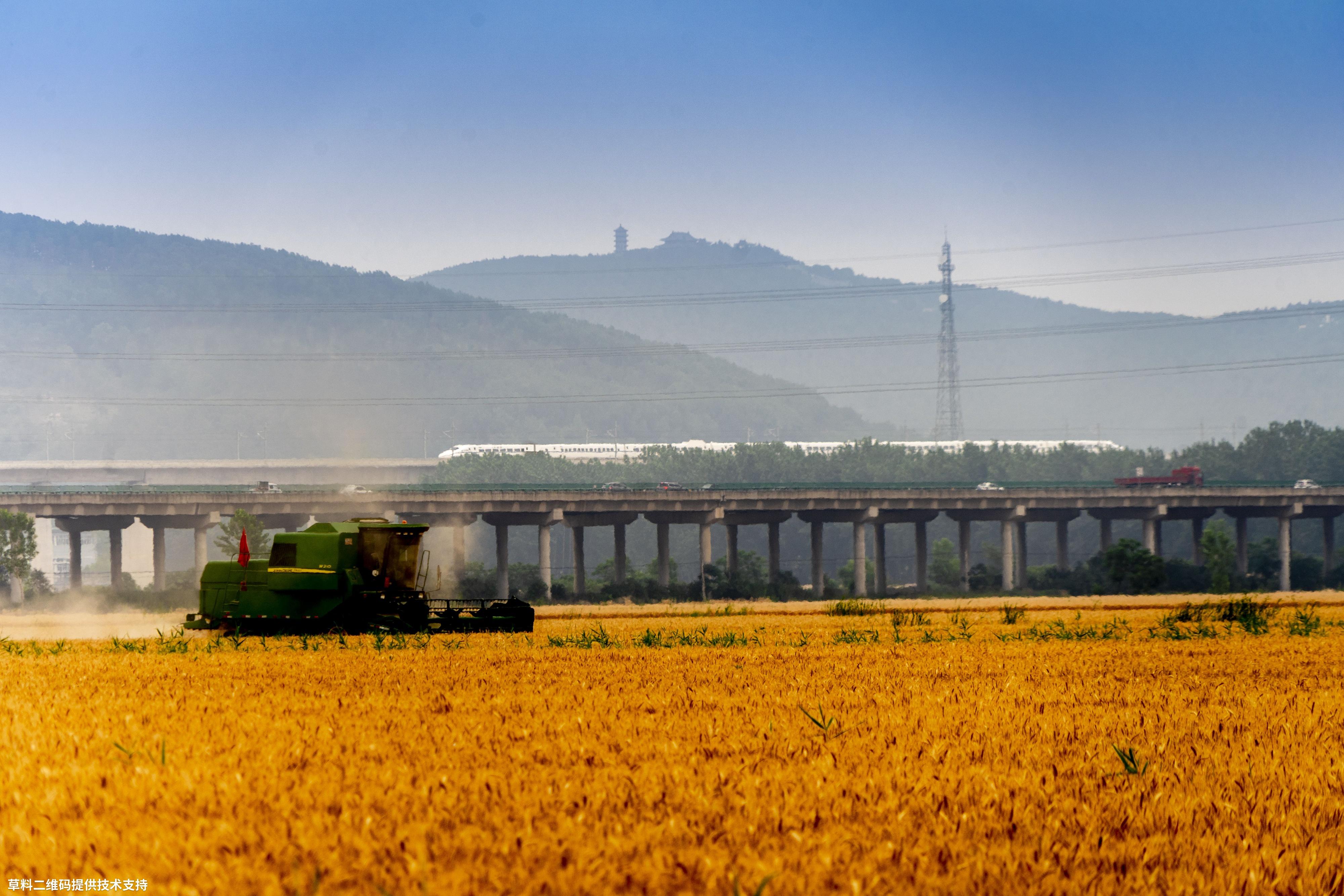 胡平《收获》Sony,2020年6月份安徽省寿县古城八公山下农民正用收割。机收割小麦,旁边动车通过,一片收获景象。.jpg
