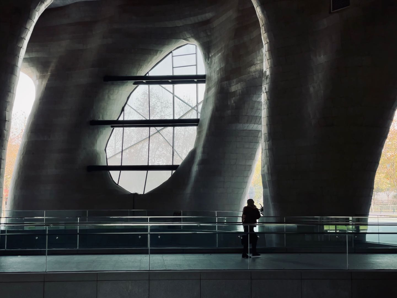 上海:喜马拉雅艺术中心.jpg