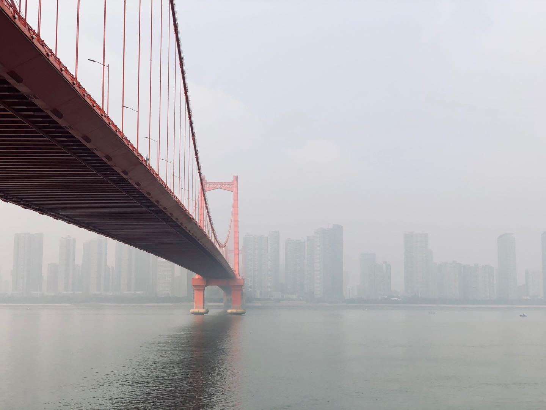 武汉:鹦鹉洲长江大桥.jpg