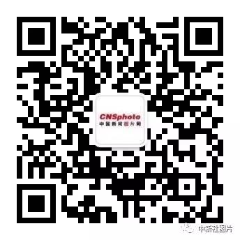 中新社图片公众号.jpg